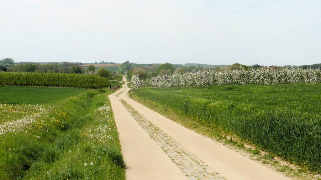 Voortberg