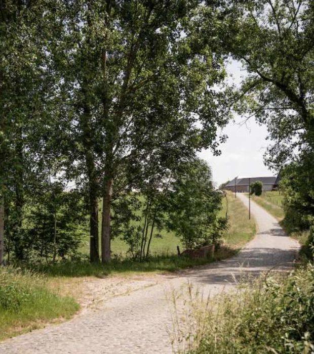 Haaghoek3