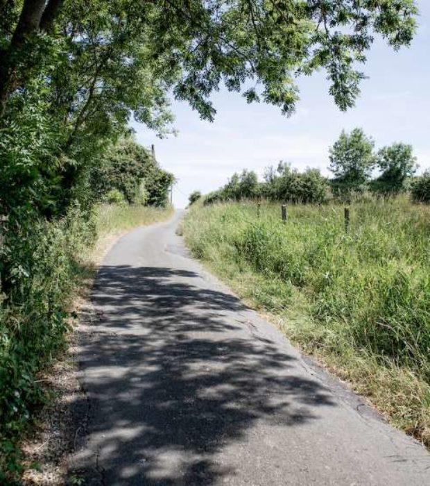 Kramon Cycling In Flanders Heuvelland 01802