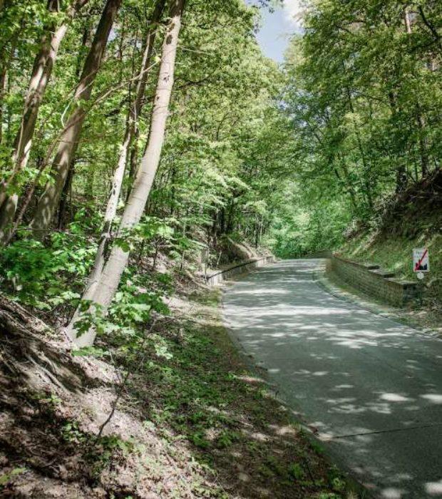 Kramon Cycling In Flanders Ruede Pecrot