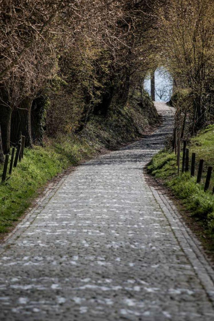 Kramon Ronde Van Vlaanderen2020 00193